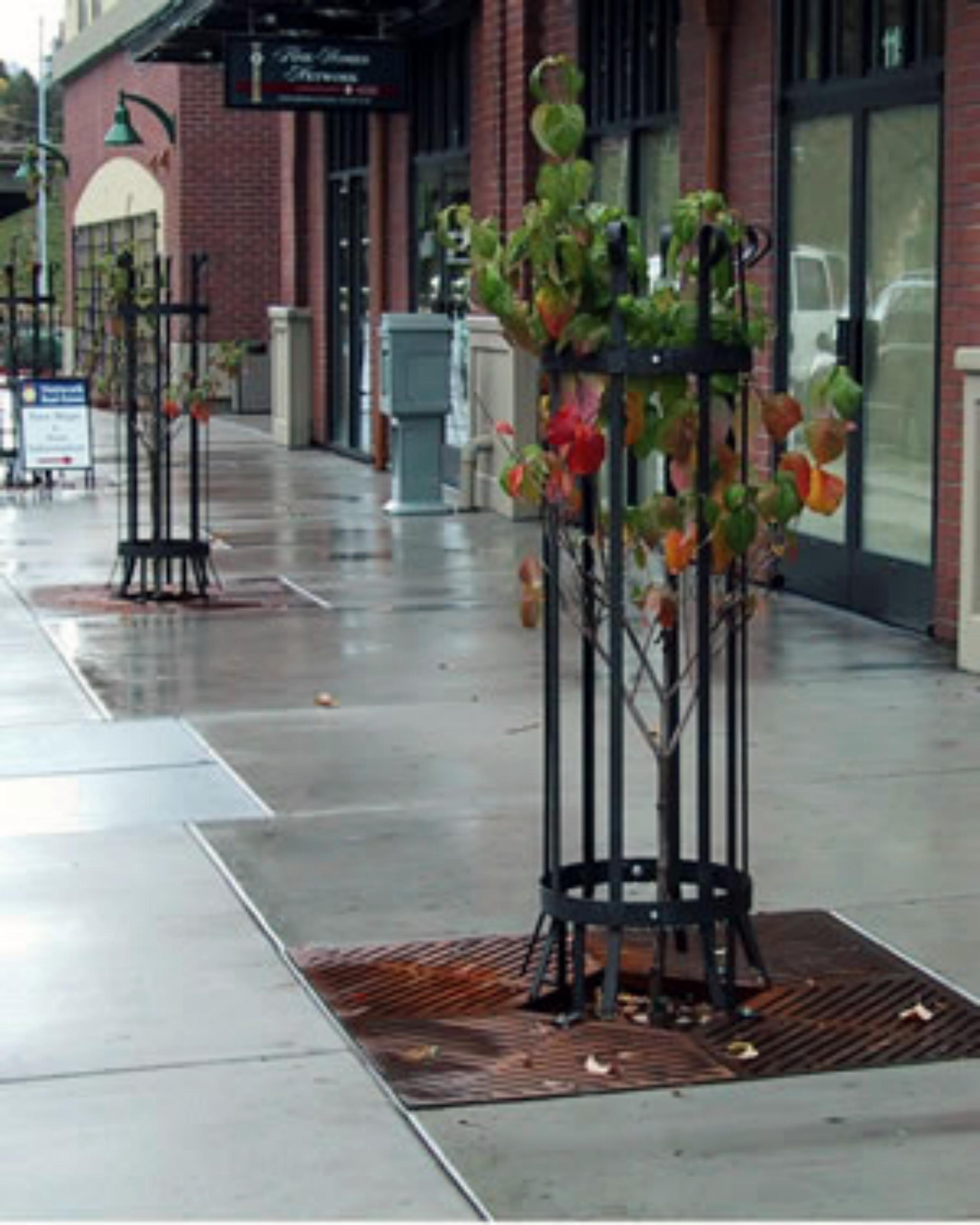 Protectores de árboles con fines decorativos en centro comercial.