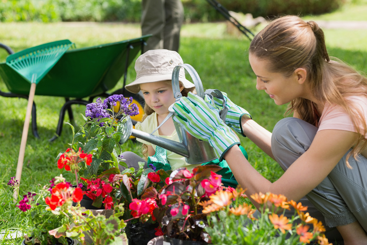 Consejos para regar el jardín